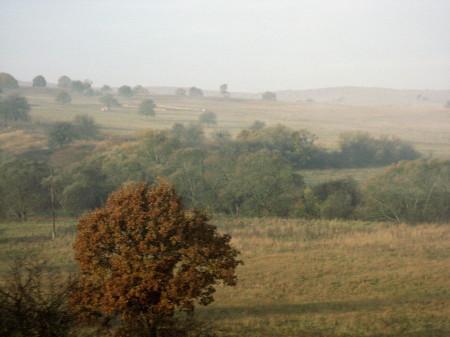 2006_transilvania_03