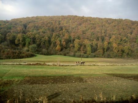 2006_transilvania_09