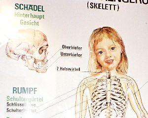 2003_Linz_SW_Skelett_zoom