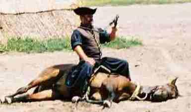 2004_horse_show2zoom.JPG